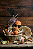 Still life with fresh boletus mushrooms in front of a wooden background