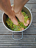 Juicing grapes with feet
