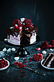 Slice of raspberry cake with chocolate meringues and pomegranate for Christmas