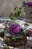 Violetter Zierkohl in Kranz aus Naturmaterialien, Zapfen als Deko