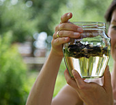 Stockrosenwein zubereiten: Stockrosenblüten mit Weißwein ziehen lassen