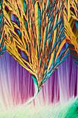 Chemicals, polarised light micrograph