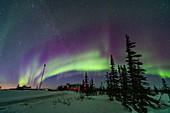 Aurora, Canada