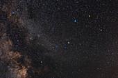 Serpens Cauda constellation