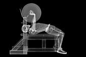 Weightlifter skeleton bench press, X-ray