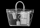 Fashion handbag containing computer devices, X-ray