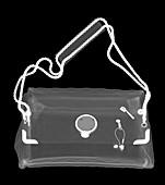 Fashion handbag, X-ray