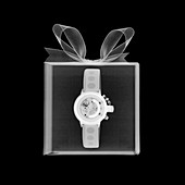 Watch in a box, X-ray