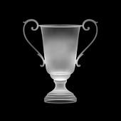 Trophy, X-ray