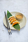 Gyoza (Japanese dumplings) with peanut dip