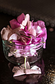 Heap of fresh flower petals placed inside glass jar on table in dark room