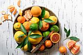 Verschiedene Zitrusfrüchte in Keramikschale