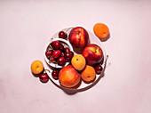 Aprikosen, Kirschen und Nektarinen auf Teller vor rosa Hintergrund
