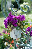 Violetter Strauß aus Flammenblumen, Stachelbeeren und Salbeiblättern an Stuhllehne gebunden