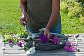 Frau gestaltet Blüten-Gesteck in breiter Wasserschale mit Flammenblumen und Ästen