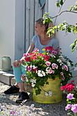 Kübel mit Geranien 'Flower Fairy White Splash' 'Happy Face White' 'Red White Bicolor' und 'Happy Face® Dark Red Mex' auf Kiesterrasse, Frau sitzt auf Stufe am Hauseingang