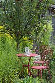 Sitzplatz im Garten unterm Apfelbaum