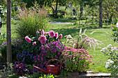 Herbstliches Beet mit Ftethenne 'Herbstfreude', Aster 'Purple Dome' 'Sapphire', Dahlie, Chinaschilf, rotes Federborstengras und Purpurglöckchen