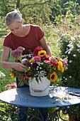 Frau steckt Spätsommerstrauß mit Sonnenblumen, Zinnien, Dahlien, Fetthenne, Löwenmäulchen, Zieräpfeln und Herbstastern