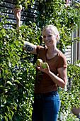 Frau pflückt Birnen vom Spalier an der Hauswand