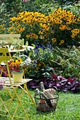 Kleine Sitzgruppe am Beet mit Sonnenhut 'Goldsturm', Mehlsalbei, Knöterich und Purpurglöckchen, Korb mit Utensilien