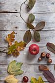 Herbststilleben mit Apfel, Kastanien und Blättern