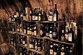 Various types of craft beer in bottles in a cellar vault
