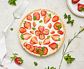 Strawberry cake with coconut sprinkles and mint on a light background
