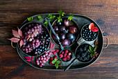 Herbstliches Stillleben mit lila Früchten und Beeren