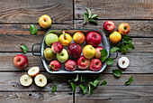 Different kinds of apples in metal plate on a wooden table in the garden
