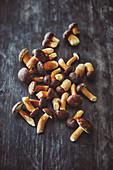 Fresh chestnut boletus (mushrooms)