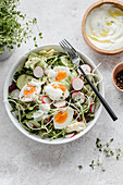 Salad with cucumber, radish sprouts, eggs and yoghurt souce