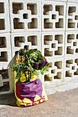 Fresh vegetables in a shopping bag