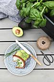 Brote mit Avocado und Schnittlauch als Snack im Garten