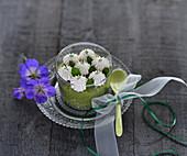 Veganer Matcha-Tapioka-Pudding mit weisser Schokocreme