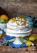 Meringue cake for Easter with lemon and poppy seeds