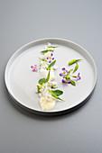Wild radish with onion cream and magnolia essence