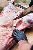 Asado being made – lamb skin being scored