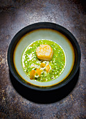 Scallops with fennel and elderberry capers