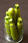 Mini-Zucchini