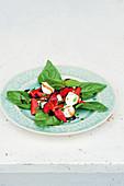 Strawberry and mozzarella salad with basil