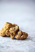 White truffles from Italy (tuber magnatum)