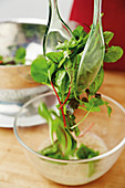 Wild herb salad being served with salad tongs