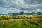 A view of the Siebengebirge mountain range, Petersberg mountain, Drachenburg mountain and Drachenfels, North Rhine-Westphalia, Germany