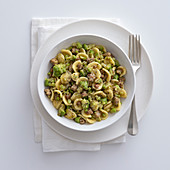 Orecchiette with broccoli and salsiccia