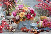 Herbststrauß aus Rosen, Hortensie, Fencheldolden, Hagebutten, Brombeeren und Herbstlaub, Kastanien, Kürbisse und Früchte vom Pfaffenhütchen als Deko