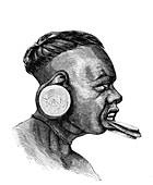 Botocudo man, 19th Century illustration