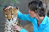 Woman posing with cheetah