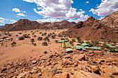 Namtib Biosphere Reserve, Namibia
