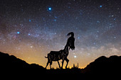 Summer triangle and sculpture